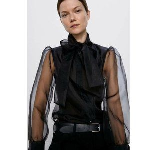 Zara Organza Semi-Sheer Blouse Top
